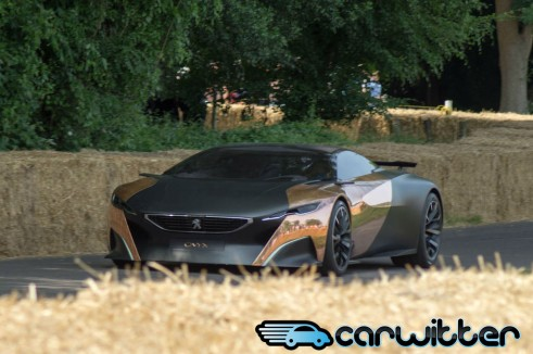 Goodwood FoS 2013 Peugeot Onyx Front carwitter 2 491x326 - Goodwood Festival of Speed 2013 - Review - Goodwood Festival of Speed 2013 - Review