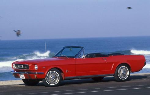 Mustang GT - Carwitter