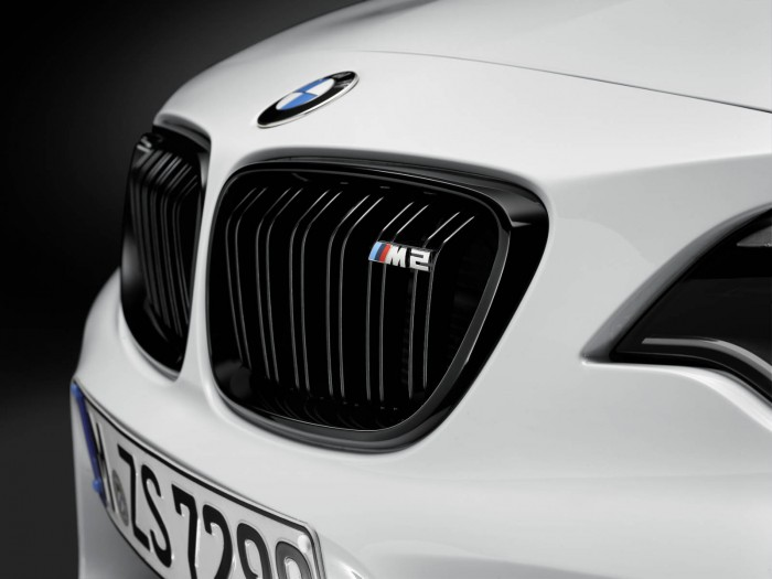 BMW M2 Performance Parts - Front Grille - carwitter