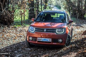 2016 Suzuki IGNIS Review Main carwitter 300x199 - 2016 Suzuki IGNIS Review - 2016 Suzuki IGNIS Review