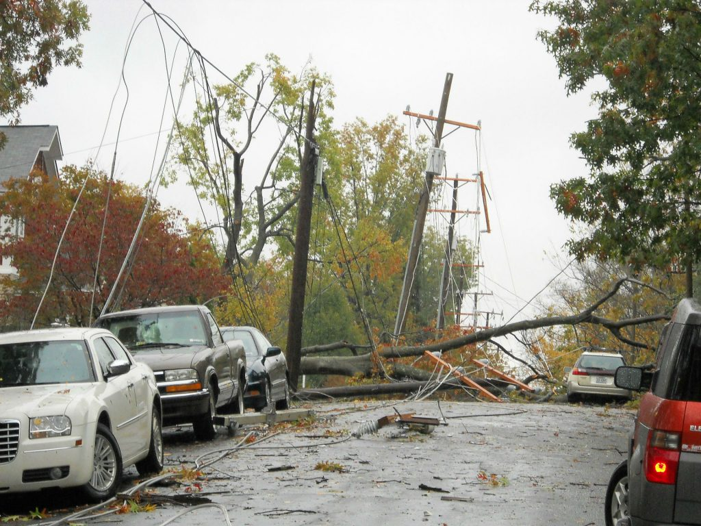 Storm Tree Cars Powerlines carwitter 1024x768 - Doris Day? Here Are Some Tips For Coping With The Storms - Doris Day? Here Are Some Tips For Coping With The Storms
