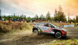 Wales Hyundai Sordo 2016 1 WRCCOM 260x150 - Teaching From The Track: Driving Lessons From The WRC - Teaching From The Track: Driving Lessons From The WRC