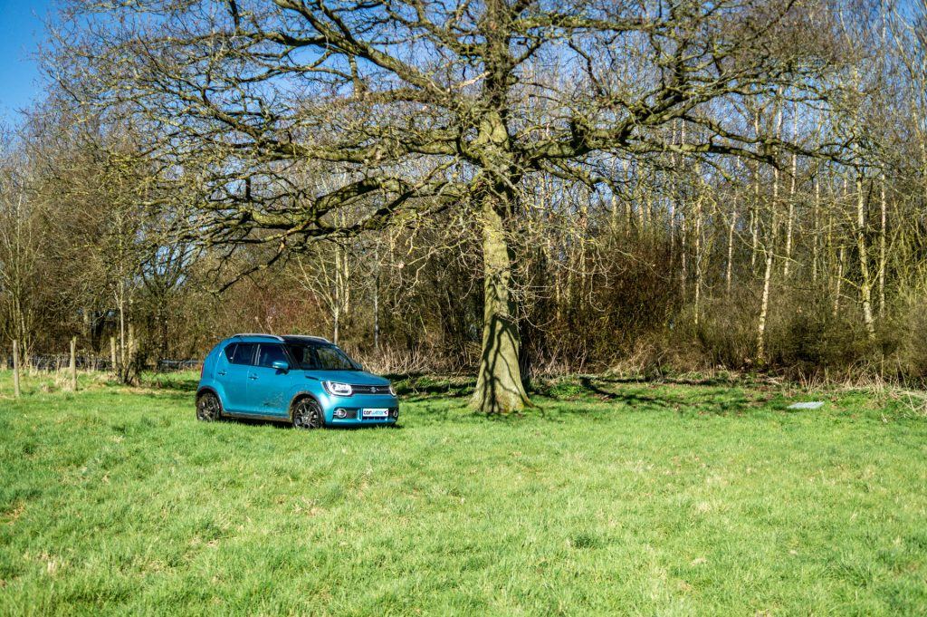 2018 Suzuki Ignis AllGrip Off Road Review Tree carwitter 1024x681 - Suzuki Ignis AllGrip Off-Road Review - Suzuki Ignis AllGrip Off-Road Review